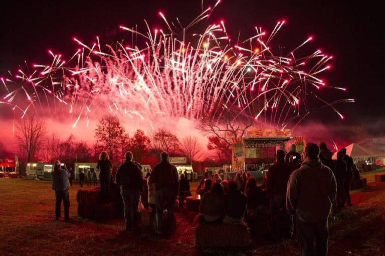 A fireworks company puts on a pyromusical at a new jersey fireworks show.